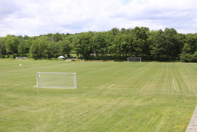 Field 3-1